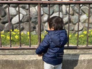 フェンスの前に立っている少年の写真・画像素材[1841836]