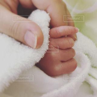 赤ちゃんの手の写真・画像素材[1869642]