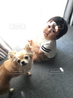 家族の写真・画像素材[2010014]