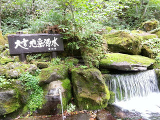 北海道の写真・画像素材[2245960]
