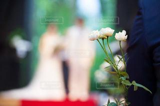 結婚式の写真・画像素材[1590427]