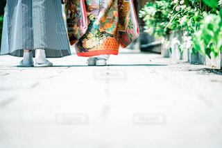 紋付袴と色打掛を着た夫婦の写真・画像素材[1801311]