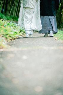 白無垢と紋付袴を着た夫婦の写真・画像素材[1801327]