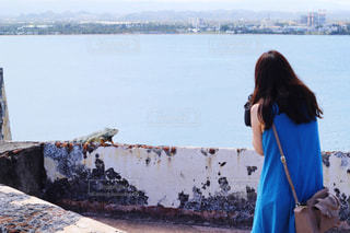 イグアナを撮影する女性の写真・画像素材[1851682]