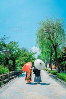 色打掛と紋付袴を着た夫婦の写真・画像素材[2131799]