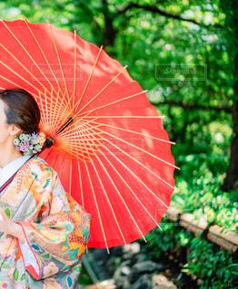 和装姿の女性の写真・画像素材[2247632]