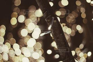 風景,冬,電球,光,イルミネーション,ライトアップ,明るい,玉ボケ,グランフロント,シャンパンゴールド