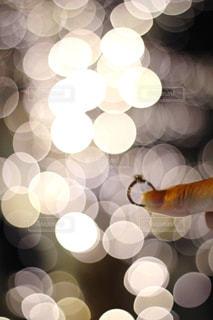 風景,冬,夜,屋外,指輪,光,ぼかし,イルミネーション,ライトアップ,明るい,玉ボケ,デート,シャンパンゴールド