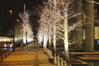 夜,屋外,樹木,イルミネーション,ライトアップ,照明,明るい,グランフロント大阪,おでかけスポット,シャンパンゴールド