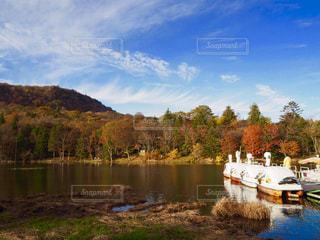 秋,紅葉,青空,池,秋空,アヒルさんボート