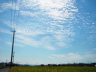 自然,風景,空,秋,屋外,青空,景色,うろこ雲,秋空,愛媛県,日中