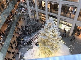 ホワイトクリスマスツリー