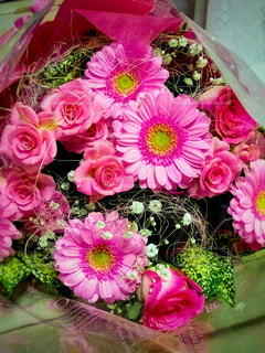 花,ピンク,花束,景色,鮮やか,新鮮,草木,ガーベラ,複数