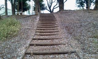 梶ヶ谷の公園の階段の写真・画像素材[2153851]