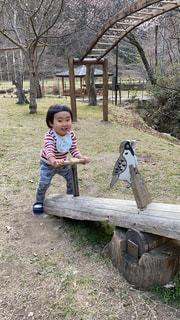 公園,木,屋外,草,樹木,ピクニック,人,赤ちゃん,地面,幼児,少年,遊具,遊び場