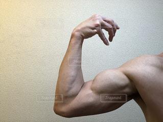 上腕二頭筋の写真・画像素材[2314171]