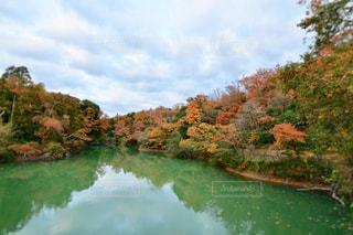 湖面に映る紅葉の写真・画像素材[1653982]