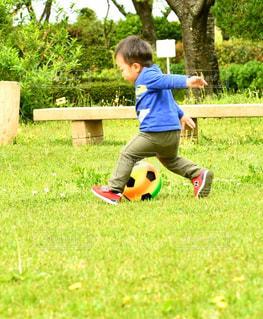 靴,緑,赤,青,後ろ姿,黄色,子供,草,樹木,ボール,芝
