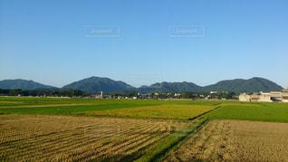 田んぼと四ツ塚の写真・画像素材[1398144]