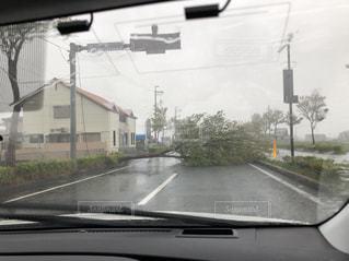 車の通りを運転の写真・画像素材[1432127]