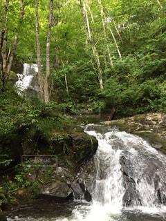 森の中の大きな滝の写真・画像素材[1454260]