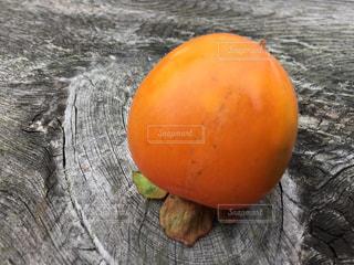 果物の一部の写真・画像素材[1483417]