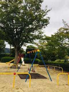 公園,屋外,緑,ブランコ,樹木,滑り台,草木,秋台風