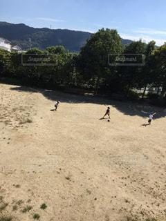 草野球の写真・画像素材[1509112]