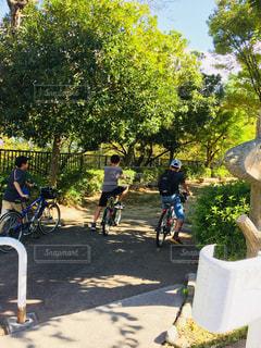 公園,自転車,屋外,日差し,仲良し,樹木,地面,小学生,男の子,草木