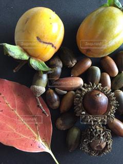 秋,紅葉,果物,クヌギ,ドングリ