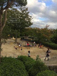 秋の公園の写真・画像素材[1516677]