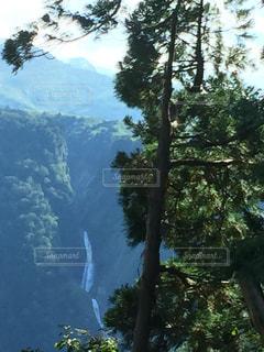 背景の山と木の写真・画像素材[1602513]