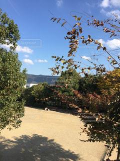 2人の公園の写真・画像素材[1604617]