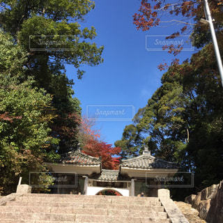 満願寺の写真・画像素材[1626283]