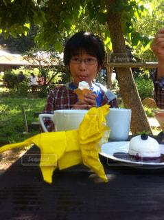 子ども,テーブル,樹木,少年,ライオンおりがみ男の子