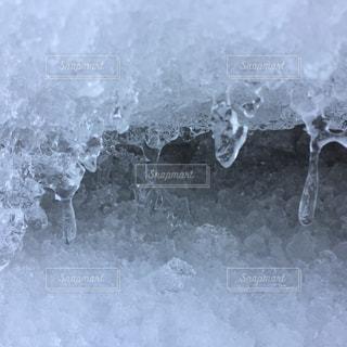 雪の大谷、雷鳥もの写真・画像素材[2114346]