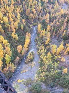 アラスカの短い秋を鉄橋からの写真・画像素材[2514631]