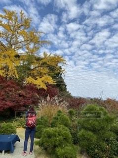 大河内山荘の眺望の写真・画像素材[2793669]