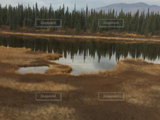 アラスカの秋の写真・画像素材[2796413]