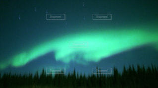 緑と青の空の写真・画像素材[2802514]