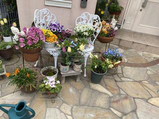 テーブルの上に花の花の写真・画像素材[3070879]
