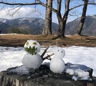 雪に覆われた山の上に座っている鳥の群の写真・画像素材[4010033]