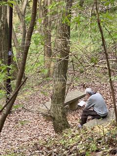 木の中に座っている男の写真・画像素材[4914427]