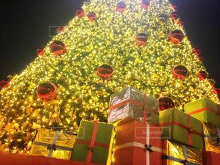 冬,夜,吉祥寺,光,プレゼント,イルミネーション,ライトアップ,キラキラ,イベント,クリスマス,ツリー,電飾