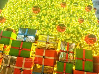 冬,夜,吉祥寺,光,プレゼント,イルミネーション,ライトアップ,イベント,クリスマス,ツリー,電飾