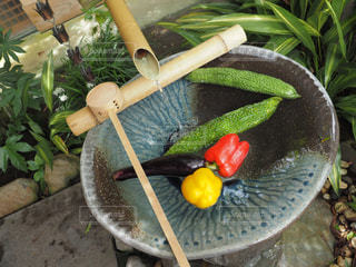 自然,夏,水,野菜,涼しい,夏野菜,夏バテ,熱中症,冷え冷え