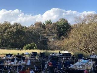 屋外,晴天,テーブル,BBQ,葛西臨海公園,秋の空,食欲の秋,蒼天