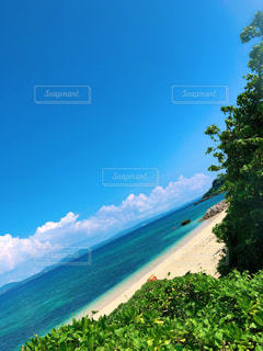 沖縄の写真・画像素材[2334619]