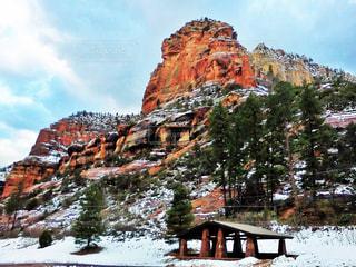 雪の中で山の木の写真・画像素材[1403837]