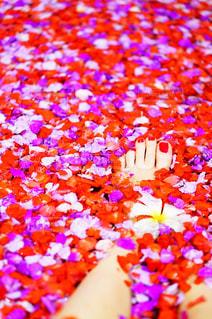 花びらとネイルの写真・画像素材[1360303]